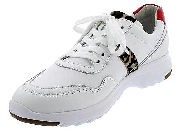 Gabor 46.318.51 Women Sneaker - White